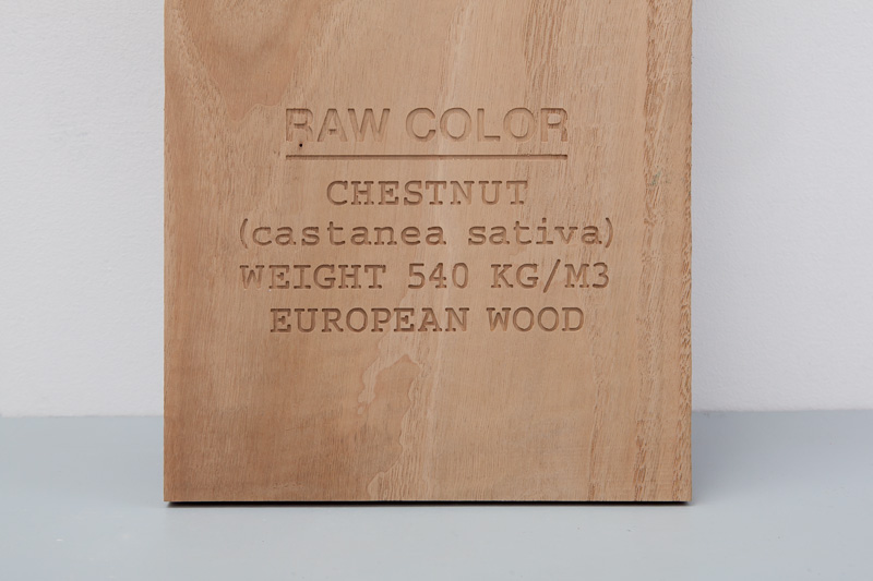 chestnut_detail-cropped